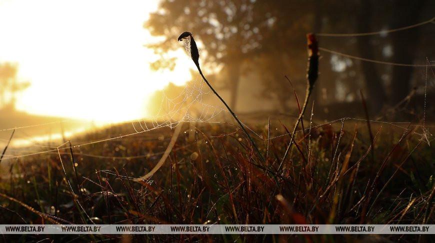 Туман и до +22°С ожидается в Беларуси 21 октября