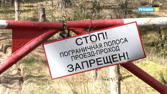 Современные системы охраны устанавливают на белорусско-литовской границе