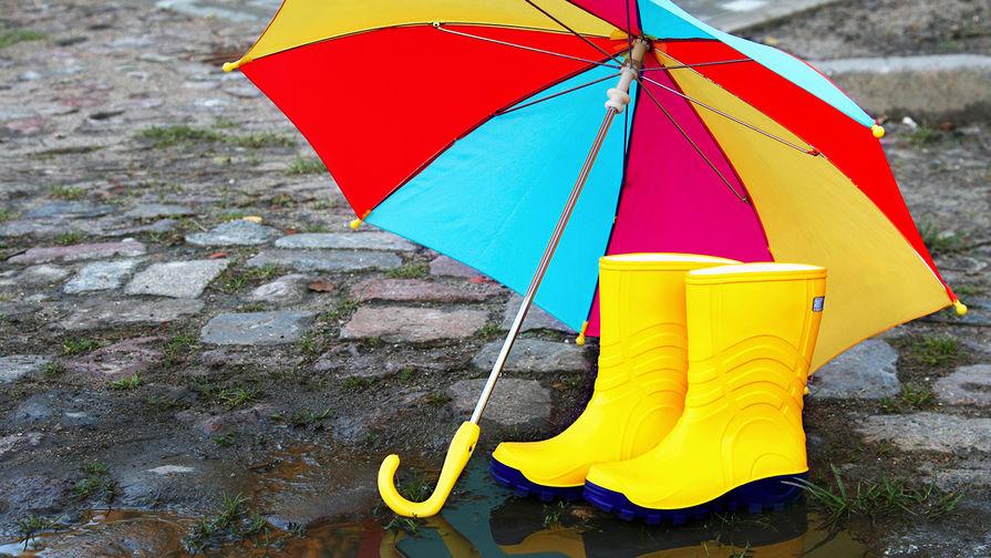Дожди и до +16°С ожидается в Беларуси 10 ноября