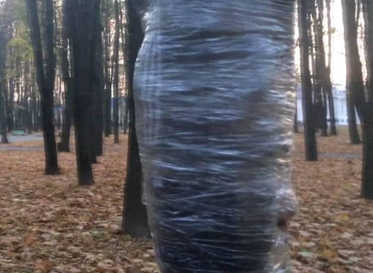 Мужчина отказался уезжать с дачи, за это его привязали к дереву