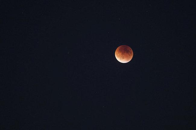 Жители Беларуси смогут сегодня увидеть лунное затмение