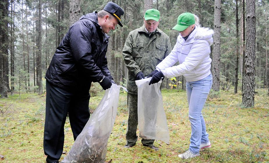 Сувенир для школьников и почти 4 000 участников. Как пройдет акция «Чистый лес» на Гродненщине?