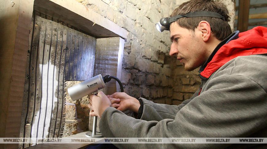 За зверями и птицами Беловежской пущи можно наблюдать онлайн в течение всей зимы