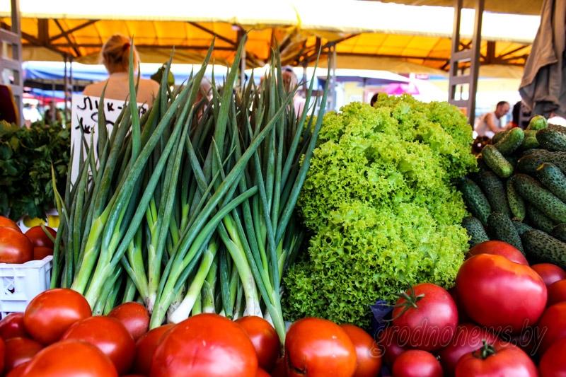 Производство овощей в Беларуси позволяет полностью обеспечить рынок отечественной продукцией — МАРТ