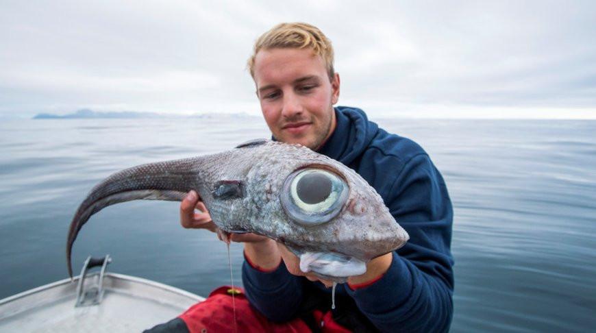 Рыбак из Норвегии выловил «инопланетную» рыбу и съел ее