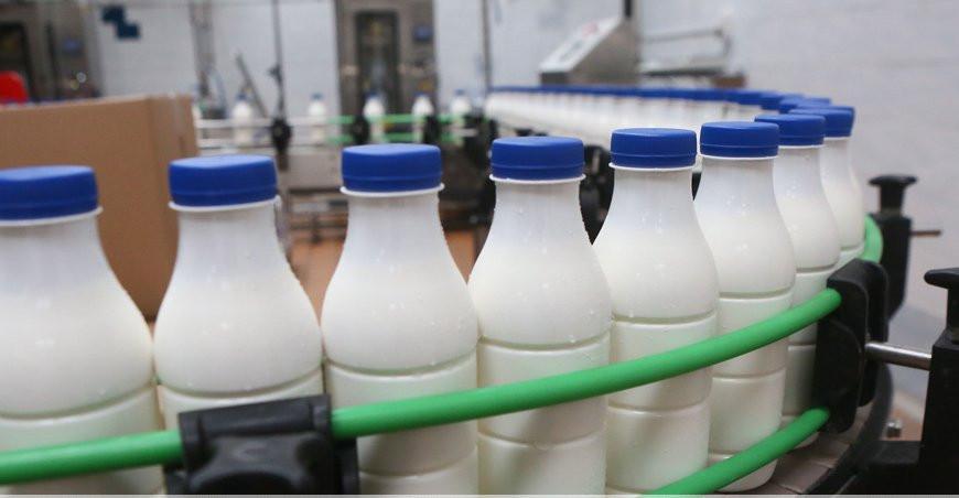 В Беларуси в I полугодии производство молочной продукции возросло почти на 3%