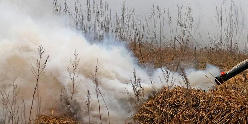 В Гродненской области с начала года привлекли к ответственности 40 нарушителей правил пожарной безопасности
