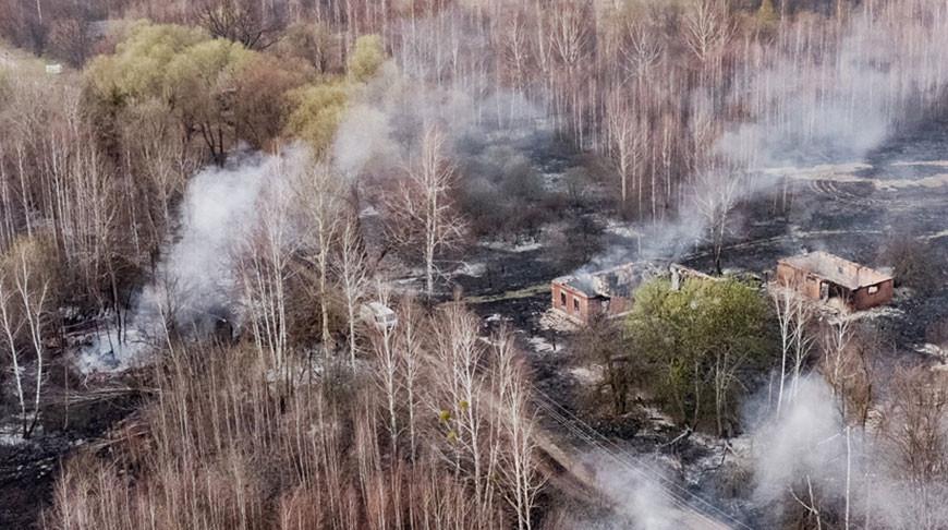 Лесные пожары в Чернобыльской зоне ликвидированы