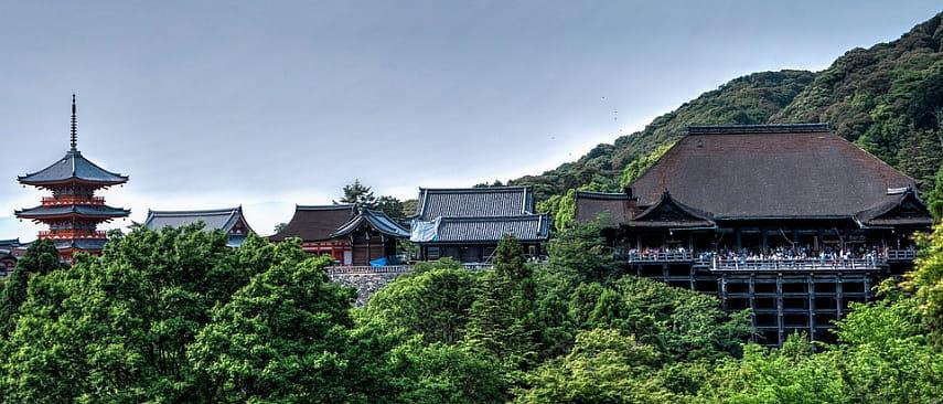 Древний замок из списка всемирного наследия ЮНЕСКО сгорел в Японии