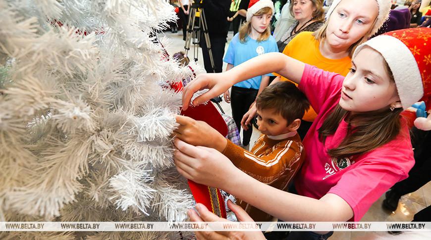 Белорусский Красный Крест начал подготовку акции «Елка желаний»