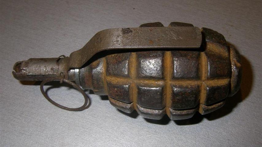 В деревне под Лидой на частном подворье нашли гранату