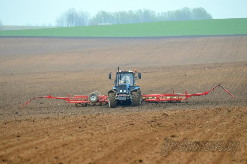 В области засеяли ранними зерновыми четверть площадей