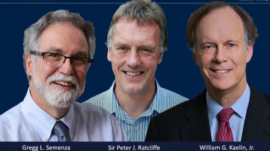 Названы имена обладателей Нобелевской премии по медицине и физиологии