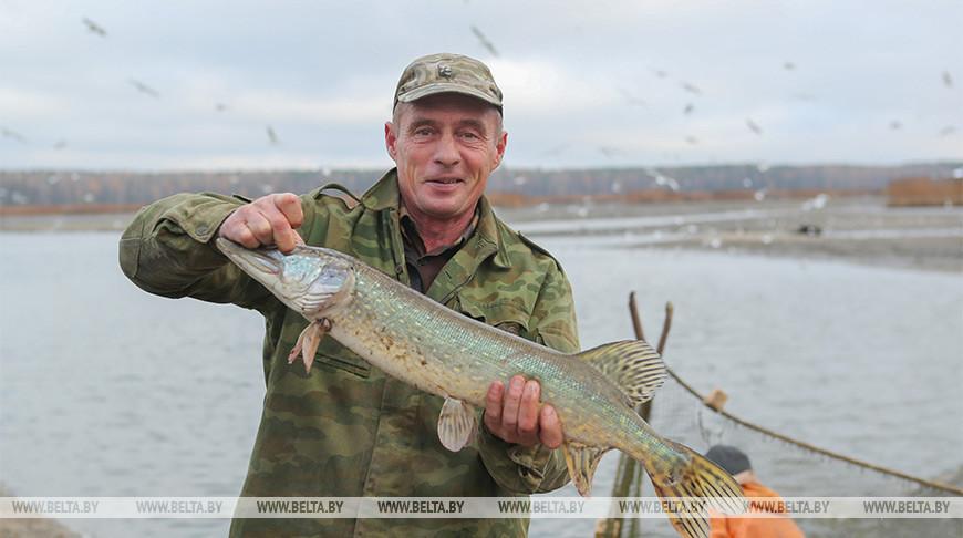 Запрет на лов щуки вводится с 1 марта в большинстве регионов Беларуси