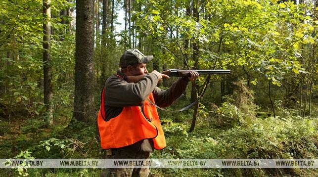 Совмин скорректировал минимальную предельную стоимость охотничьих путевок