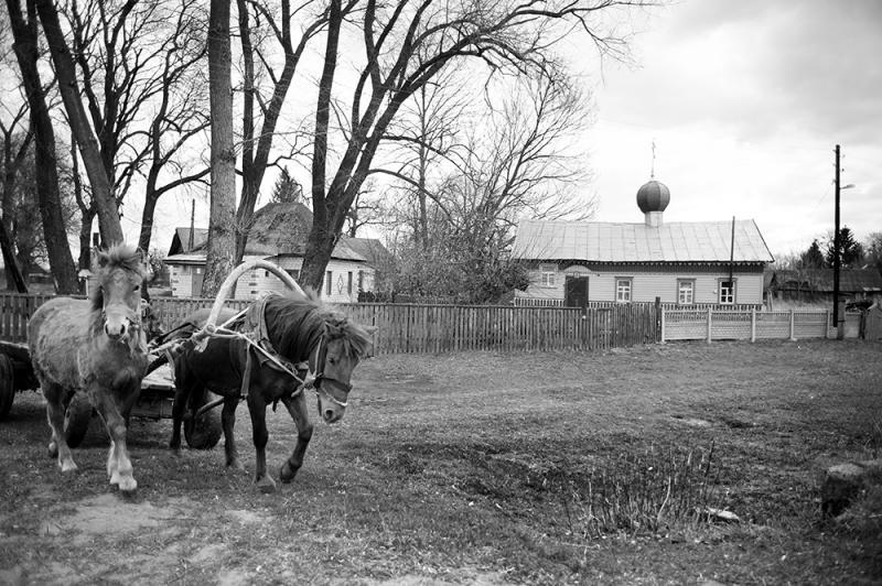 Фотопроект «Чернобыль. Исчезновение в разрезе» покажут в Гродно