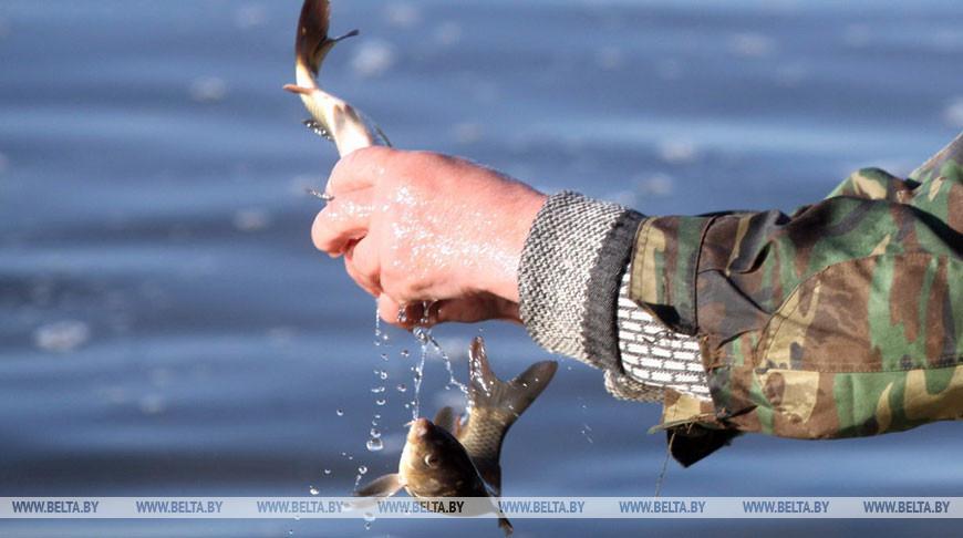 Почти 4 т рыбы выпустили в озера и водохранилища Гродненской области
