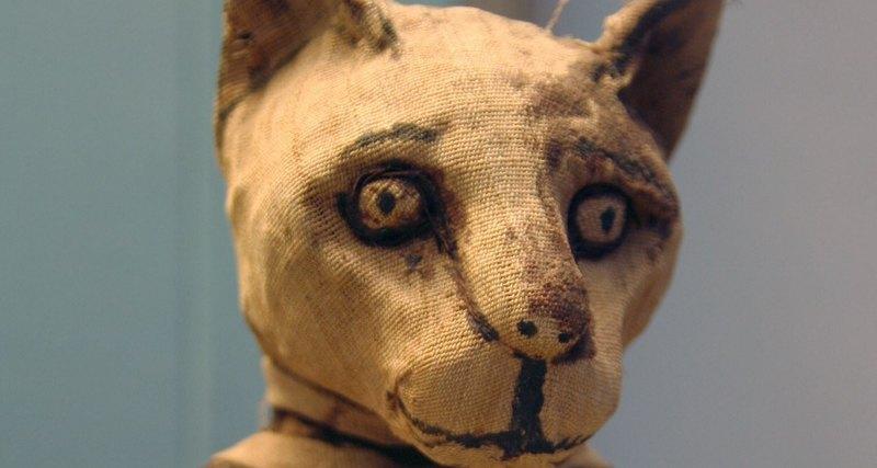 Найдена кошачья мумия с четырьмя хвостами