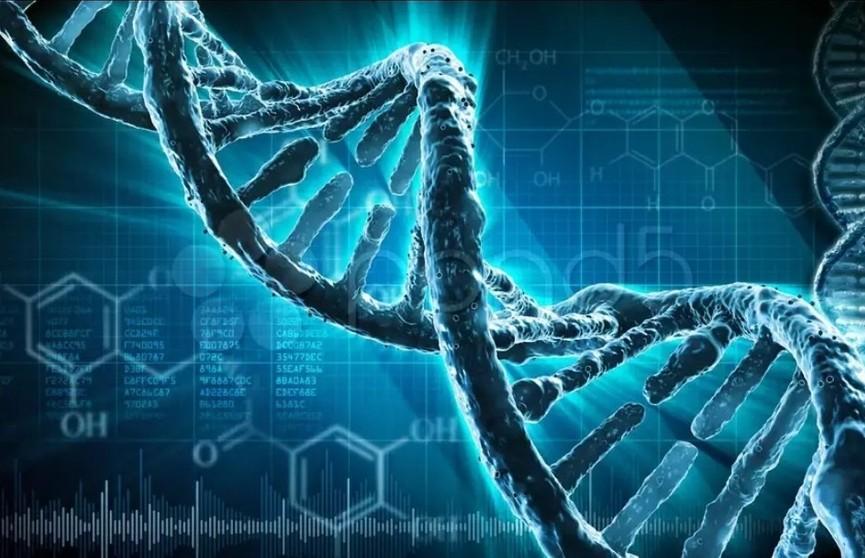 На что влияют гены и как избавиться от негативных предрасположенностей?