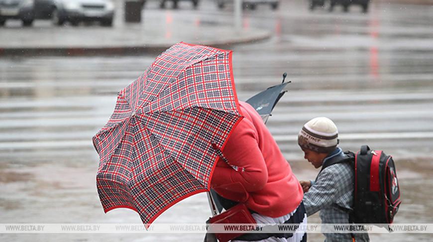 Мокрый снег с дождем и порывистый ветер ожидаются в Беларуси 30 марта