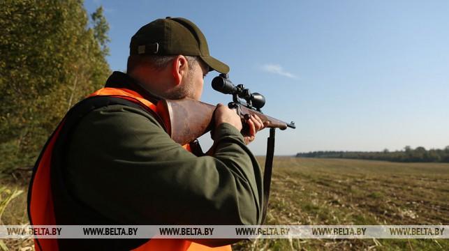 В Беларуси ужесточается ответственность за грубые нарушения ведения охоты
