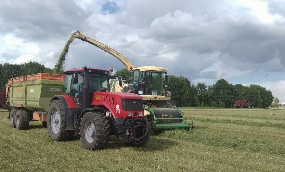 Первый укос трав проведен в Беларуси на 40,8% площадей