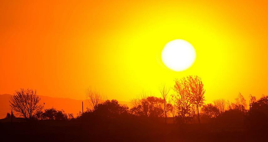 Метеорологи назвали лето 2019 года самым жарким