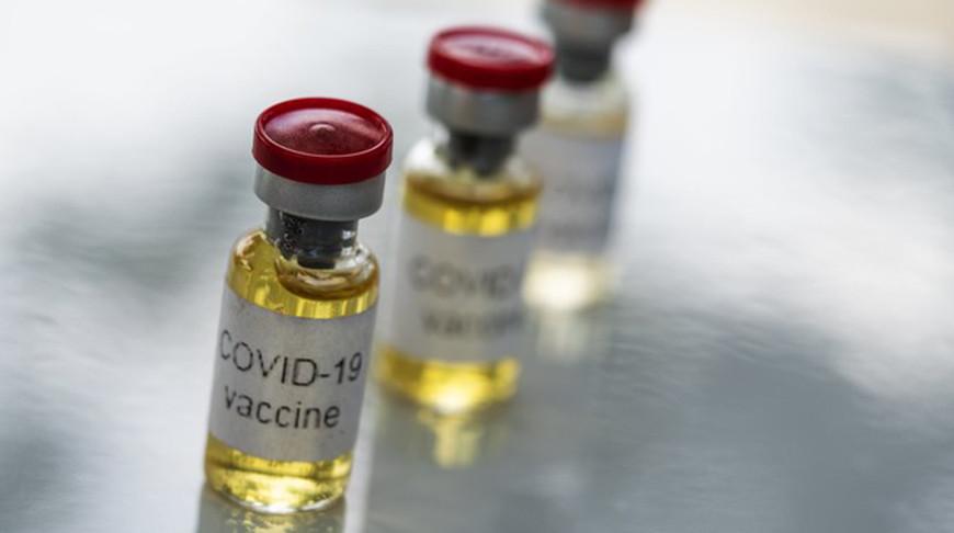 Глава ВОЗ призвал все государства присоединиться к программе вакцинации