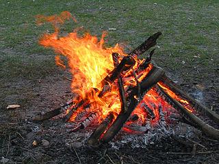 В Дятловском районе мужчина упал в огонь при сжигании мусора
