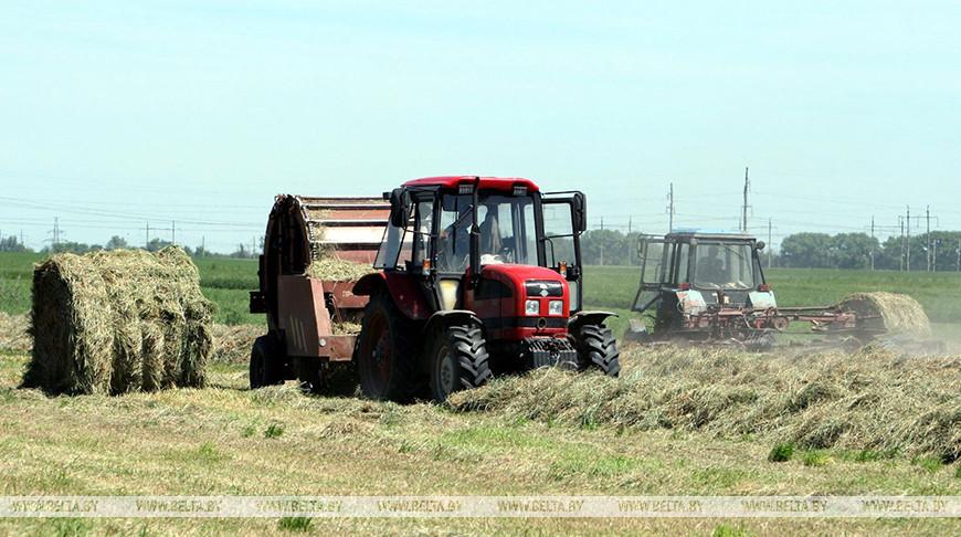 Второй укос трав проведен в Беларуси почти на половине площадей