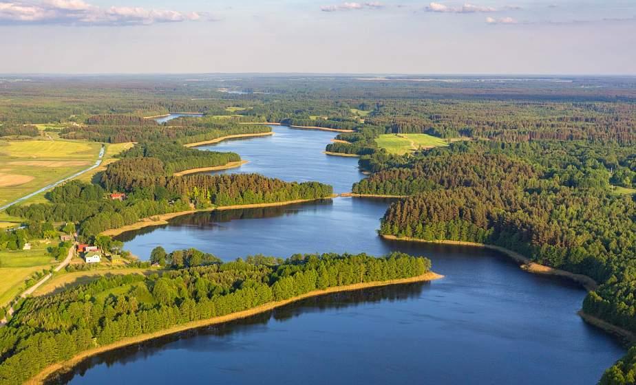 Беларусь входит в десятку лесных государств Европы