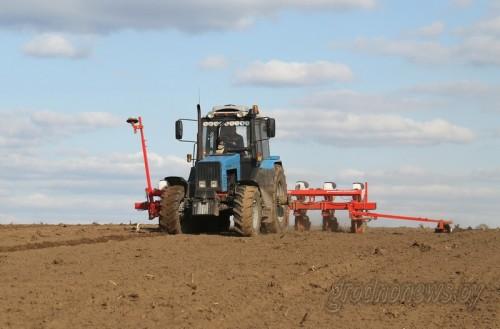 Аграрии Гродненщины завершают посадку картофеля