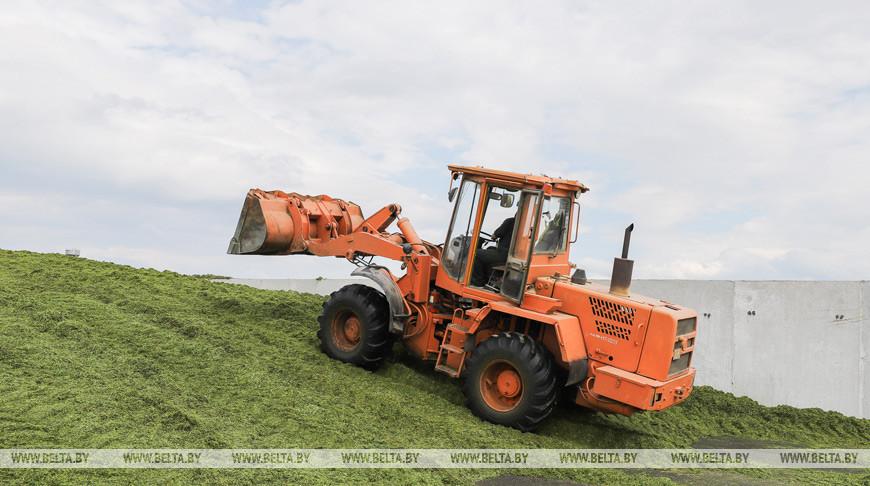 «Качество и еще раз качество!» — Александр Лукашенко требует не допускать безалаберности в сельском хозяйстве
