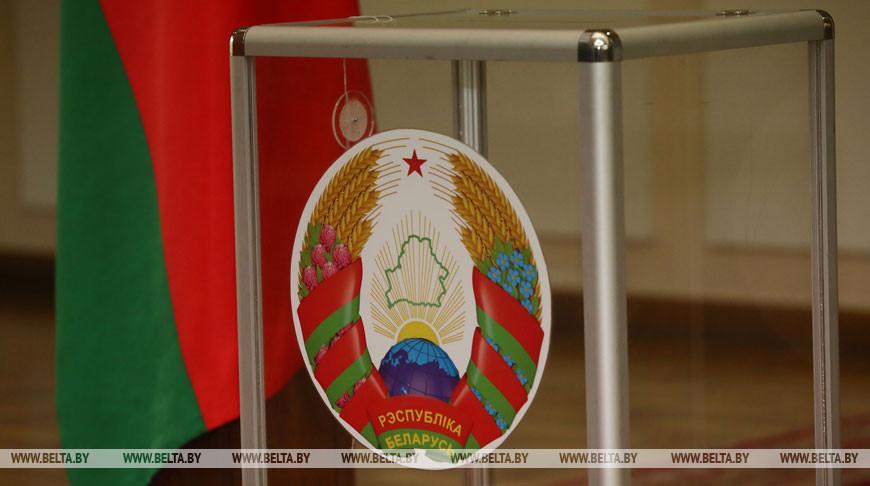 Выборы в Совет Республики проходят в Беларуси
