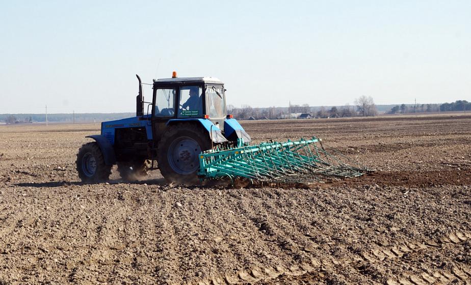В Беларуси завершается сев льна и сахарной свеклы