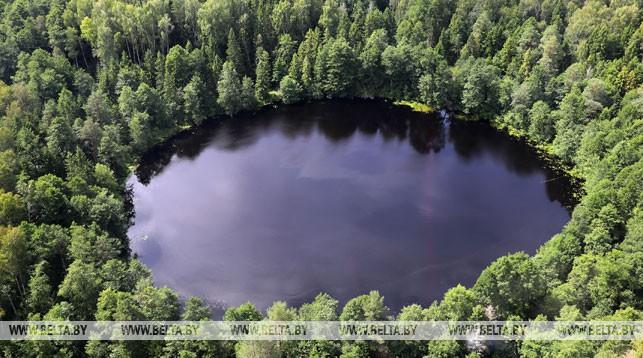 Около 8,9% территории Беларуси относятся к особо охраняемым