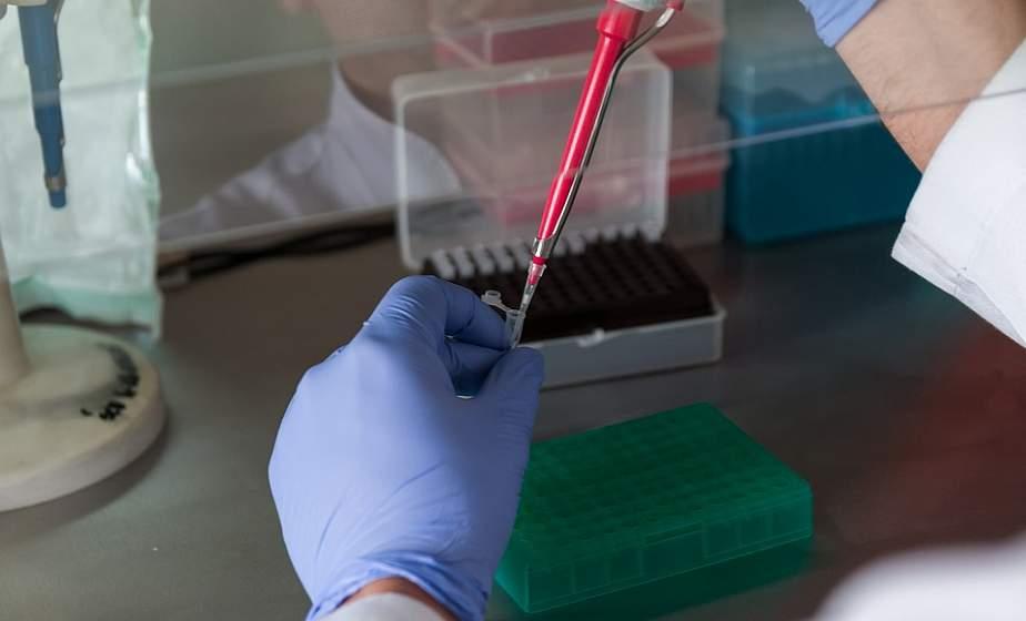 За сутки в Беларуси зарегистрированы 834 пациента с COVID-19, выписаны 1035