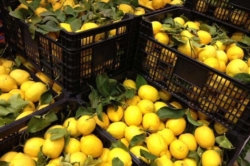 Сообщения о значительном росте цен на лимоны, имбирь и чеснок поступили на телефонную линию МАРТ