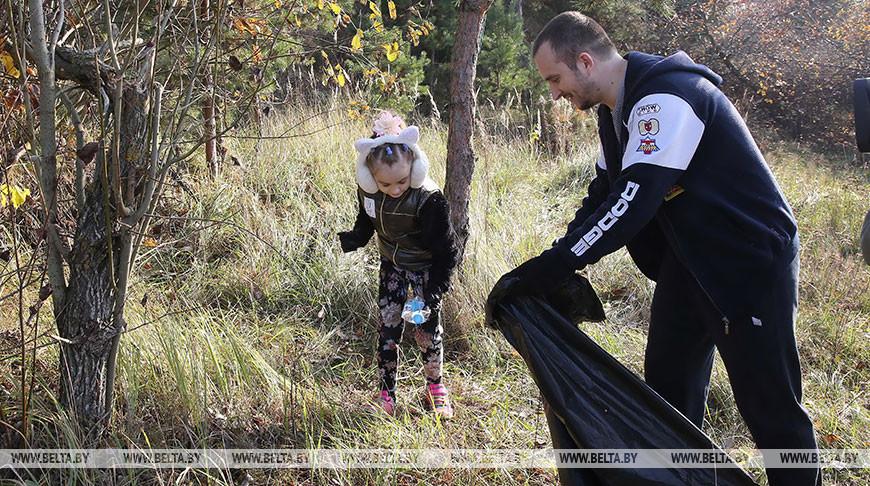 "Акция ""Чистый лес"" проходит в Беларуси"
