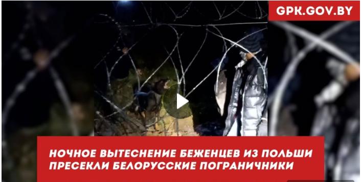 Польские пограничники попытались вытеснить очередную группу мигрантов на территорию Беларуси