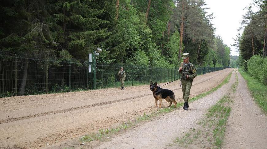 Белорусские пограничники за сутки задержали двух нарушителей госграницы