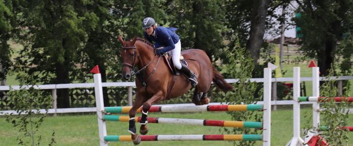 Республиканские соревнования и открытый кубок Гродненской области по конному спорту проходят на Новогрудчине (+видео)