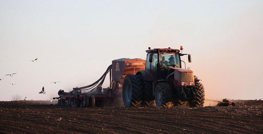 Яровой сев в Беларуси проведен более чем на 70% площадей