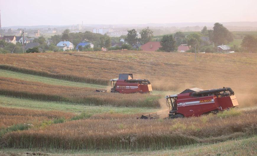 В области убрана пятая часть площадей, занятых под зерновыми и зернобобовыми культурами