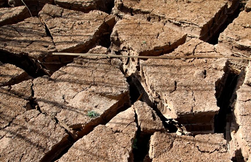 ООН: +2°C – и массовый голод на Земле неизбежен