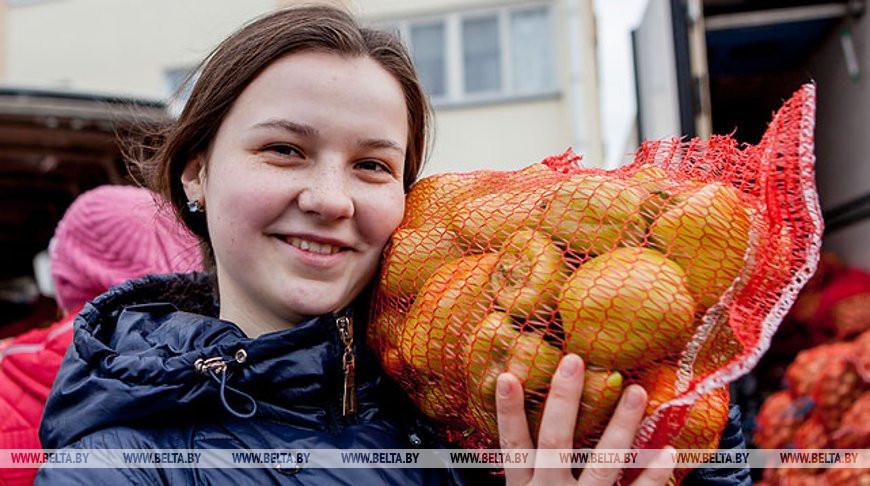 Около 50 сельхозярмарок проведут в Гродненской области