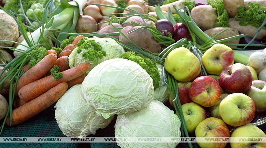 Производство сельхозпродукции в Беларуси в январе-августе выросло на 7,9%