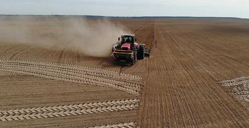 Яровой сев в Беларуси проведен более чем на 90% площадей