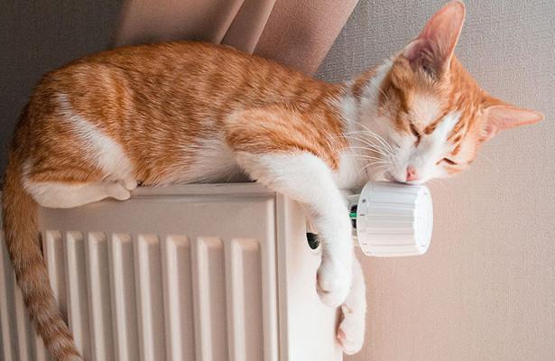 Отопление в жилом фонде Гродненской области начнут включать с 27 сентября