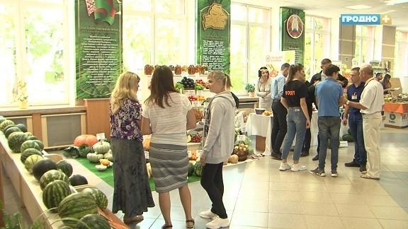 Международный форум овощеводов проходит в Гродно